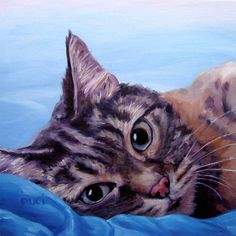 DearOnes custom Pet Portrait Oil Paintings by by puciPetPortraits Here Kitty Kitty, Kitty Cats, Animal Paintings, Oil Paintings, Pet Art, Cat Room, Animal Faces, Cat Drawing, Love Painting