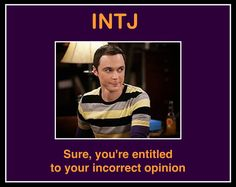 I don't watch Big Bang Theory but this describes one of my guy friends who is an ISTJ exactly! Intj Intp, Introvert, Intj Humor, Intj Women, Intj Personality, My Guy, That Way, At Least, Words