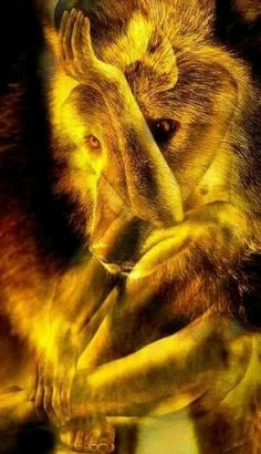 # Out of the flames Wolf Images, Wolf Pictures, American Indian Art, Native American Art, Fantasy Wolf, Fantasy Art, Beautiful Creatures, Animals Beautiful, Tier Wolf