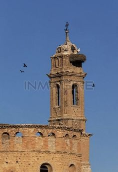 Spain,Mediterrannee aeria,Aragon,Caspe,nest on the bell tower of a church Stock Photography