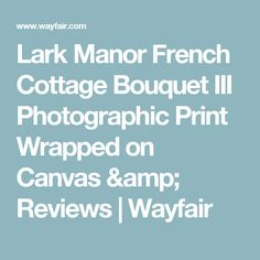Lark Manor French Cottage Bouquet III Photographic Print Wrapped on Canvas & Reviews   Wayfair