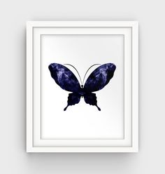 Butterfly Art Print Navy Blue Wall Art Butterfly by GalliniDesign
