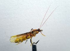 Realistic Caddis dry fly