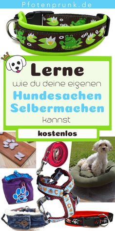 Hundesachen Selbermachen Great instructions for DIY. Ideal for beginners! Whether collar, (safety) harness or food bag, at Pfotenprunk.de you will find many simple instructions for your DIY projects. The post Do it yourself appeared first on Fab. Cute Puppies, Dogs And Puppies, Animals And Pets, Funny Animals, Feed Bags, Dog Hacks, Funny Animal Videos, Dog Leash, Dog Accessories