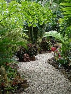 Margie en Alex Tymson van The International Cordyline Society - Tropical Garden Tropical Landscaping, Landscaping With Rocks, Backyard Landscaping, Landscaping Ideas, Tropical Gardens, Florida Landscaping, Tropical Backyard, Florida Gardening, Side Garden