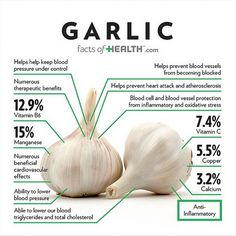 Feeling like you are about to get sick or are already sick and want to recover? Eating garlic is one of the best ways to boost your immune system! Learn what else consuming garlic can do for you. What's your favorite way to prepare garlic? Health And Nutrition, Health And Wellness, Health Tips, Holistic Nutrition, Health Facts, Nutrition Drinks, Complete Nutrition, Nutrition Guide, Healthy Eating