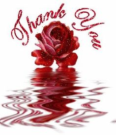 ᐅ Top 59 Thank You images, greetings and pictures for WhatsApp Thank You Images, Thank You Quotes, Thank You Greetings, Thank You Cards, Birthday Wishes, Happy Birthday, Birthday Celebration, Gifs, Glitter Graphics