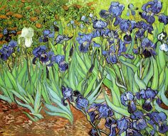 3 Wonderful Irises Painted By Vincent van Gogh | http://thebrushstroke.com/3-wonderful-irises-painted-vincent-van-gogh/