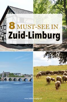 Wat te doen in Zuid-Limburg? 8 must-do's Hiking Routes, Staycation, Weekender, Outdoor Activities, Places To See, Netherlands, Holland, Travel Tips, Things To Do