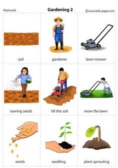 English Idioms, English Vocabulary, Vocabulary Strategies, Learn English Words, English Language Learning, Kids Learning Activities, Preschool Crafts, Phonics, Games For Kids