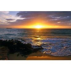 6 Feet x 4 Feet 2 Inches Makena Beach Wall Mural
