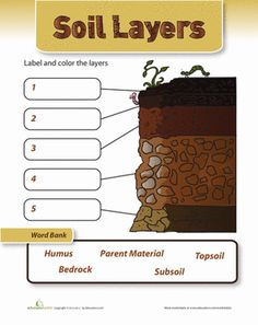 Earth science enthusiasts learn the names of soil layers in this geology worksheet. Students use a word bank to correctly label the five layers of the Earth's soil: humus, topsoil, subsoil, parent mat Third Grade Science Projects, Second Grade Science, Middle School Science, Elementary Science, Science Classroom, Teaching Science, Science Education, Life Science, Science Experiments