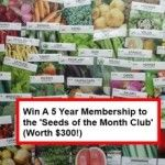 """GIVEAWAY: Win A 5 Year Membership To """"Seeds Of The Month"""" Club"""