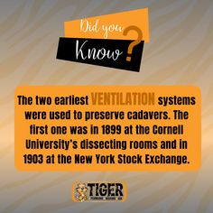 """Check out our """"Did You Know"""" fact of the week! Learn more interesting HVAC facts by following us. 🐯 Heating Furnace, Did You Know Facts, Ventilation System, Minneapolis, Plumbing, More Fun, University, Learning, Check"""