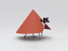 MVRDV, Shigeru Ban and More Create Architecture For Dogs—With ...