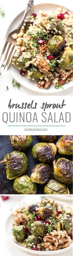 This AMAZING Roasted Brussels Sprout Quinoa Salad is the perfect side dish for your holiday feast. Simple, pretty, and oh so flavorful!