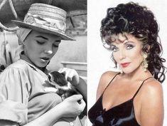 Джоан Коллинз и кошка