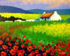 irish cottage in poppy field