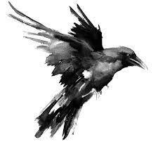 Resultado de imagem para cuervos de odin tattoo