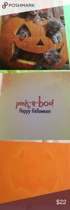 Halloween Cards New 1-Dozen nice quality/orange envelopes w/pumpkin Accessories