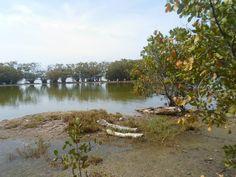 Parque Ecológico de Nigua, R.D.