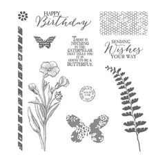 Butterfly Basics Photopolymer Stamp Set by Stampin' Up! 137154 OM
