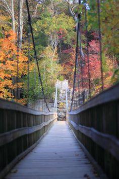 Fall colors - Turkey Run State Park