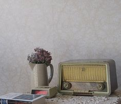 Home Decor -Old radio and teapot with flowers-  Galápagos: Fevereiro 2010