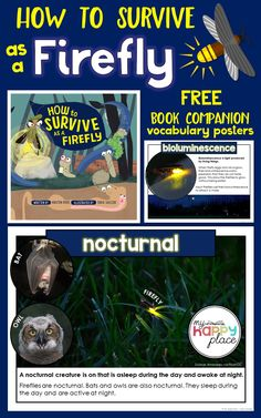 These five free firefly vocabulary posters can accompany the book How to Survive as a Firefly or any lightning bug lesson. Thematic Units, Science Lessons, Science Experiments, Beginning Of The School Year, Kindergarten Activities, Math Resources, Read Aloud, Vocabulary, Books