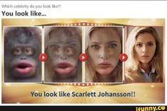 30 Best Funny Scarlett Johansson Memes Images Memes Scarlett Johansson Scarlett