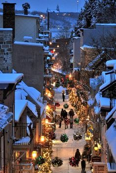 Christmas in Quebec City, Canada. I've been to Quebec City in the winter and its absolutely gorgeous! Old Quebec, Quebec City, Dream Vacations, Vacation Spots, Oh The Places You'll Go, Places To Travel, Beautiful World, Beautiful Places, Amazing Places