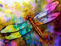beautiful dragonfly by Dion Dior.blogspot  ...: read this great artist post:  Words To Live By
