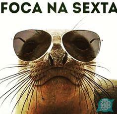 Imagens Animais para Redes Sociais - Sexta-feira!: http://www.meuzapzap.com/imagens/baixar/animais/2063/download/?w=whats