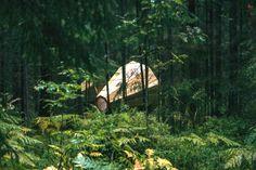 Tra gli alberi della foresta Estone, l'amplificatore in legno esalta i suoni della natura.