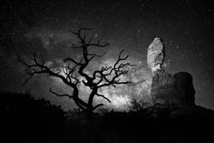 Balanced Rock, Utah Balanced Rock and lone tree in Arches National Park. Location: Moab, Utah Photo and caption by Manish Mamtani / National Geographic Travel Photographer of the Year Contest National Geographic Photo Contest, National Geographic Travel, Nocturne, Parc National, National Parks, Des Photos Saisissantes, Photographie National Geographic, Bbc News, Online Travel Sites