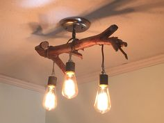 DIY driftwood chandelier and Edison bulbs