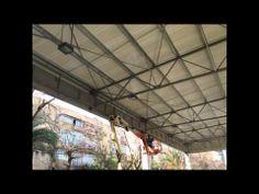 0543032225 הדברת מזיקים בתל אביב,מדביר חולדות במודיעין,הרחקת יונים בירוש...