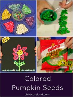 Colored Pumpkin Seeds ... great for counting ... sorting ... measuring ... and art projects.