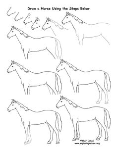 Horse Drawing Lesson