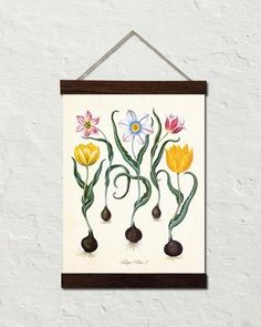 Antique Botanical Tulip No. 2 Giclee - Canvas Wall Hanging