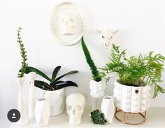 CERAMICS ALL WHITE- rialheim iconic collection. All White, Planter Pots, Ceramics, Collection, Ceramica, Pottery, Ceramic Art, Clay Crafts, Porcelain