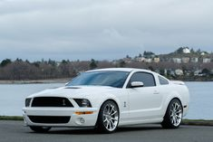 2007 Ford Mustang Shelby Coupe Custom - Silver Arrow Cars Ltd. 2007 Mustang Gt, Ford Mustang Shelby Gt500, Ford Shelby, Mustang Cars, Car Insurance Rates, Sport Cars, Mustangs, Exotic Cars, Muscle Cars