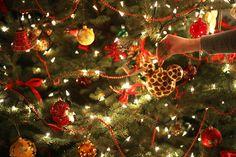 Nieznane+piosenki+świąteczne