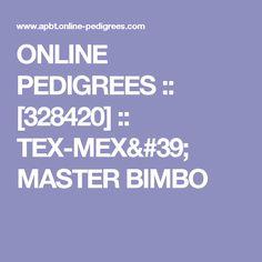 ONLINE PEDIGREES  :: [328420] :: TEX-MEX' MASTER BIMBO