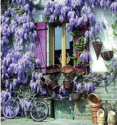 3 things I love.  Pretty windows, baskets & lavender