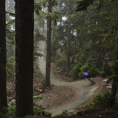 Home turf. | @world_enduro Rider, @leishner returns to the roots of her riding for some sweet and savory #GarboZone laps in the newest Fall Lines piece on @Pinkbike (link in bio)| |#AllTimeFallTime...
