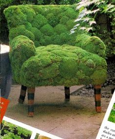 """Out there"" alert----moss garden chair project"