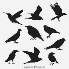 """Képtalálat a következőre: """"blackbird-designs peace rose """""""