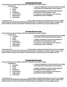 cellular organization worksheet a well student and the o 39 jays. Black Bedroom Furniture Sets. Home Design Ideas