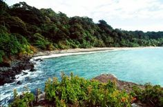 Isla Gorgona, Maravilla de Colombia en el océano Pacifico.   Tiketeo